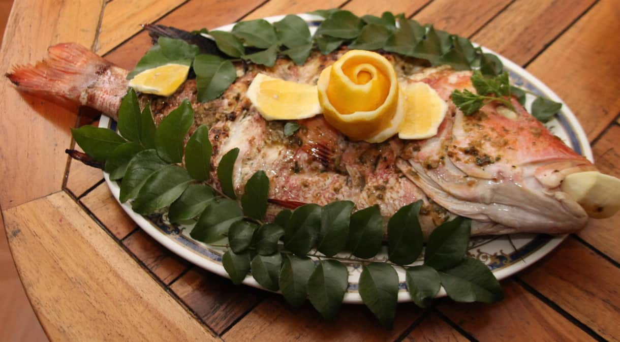 Fresh red snapper of the grill - catering is available