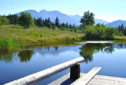 Enjoy the Beautiful views of the Olympic Mountains from the pond