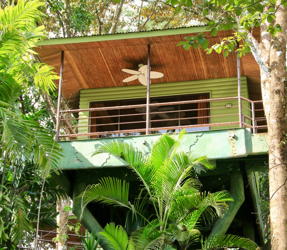 Elevated amongst trees.