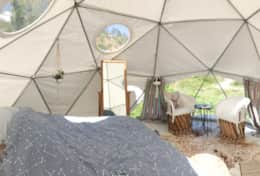 Asheville Glamping Dome 1 interior with planters