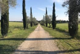 Pathway from the Villa, completely surrounded from countryside.