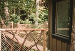 Treehouse side deck -Asheville Glamping