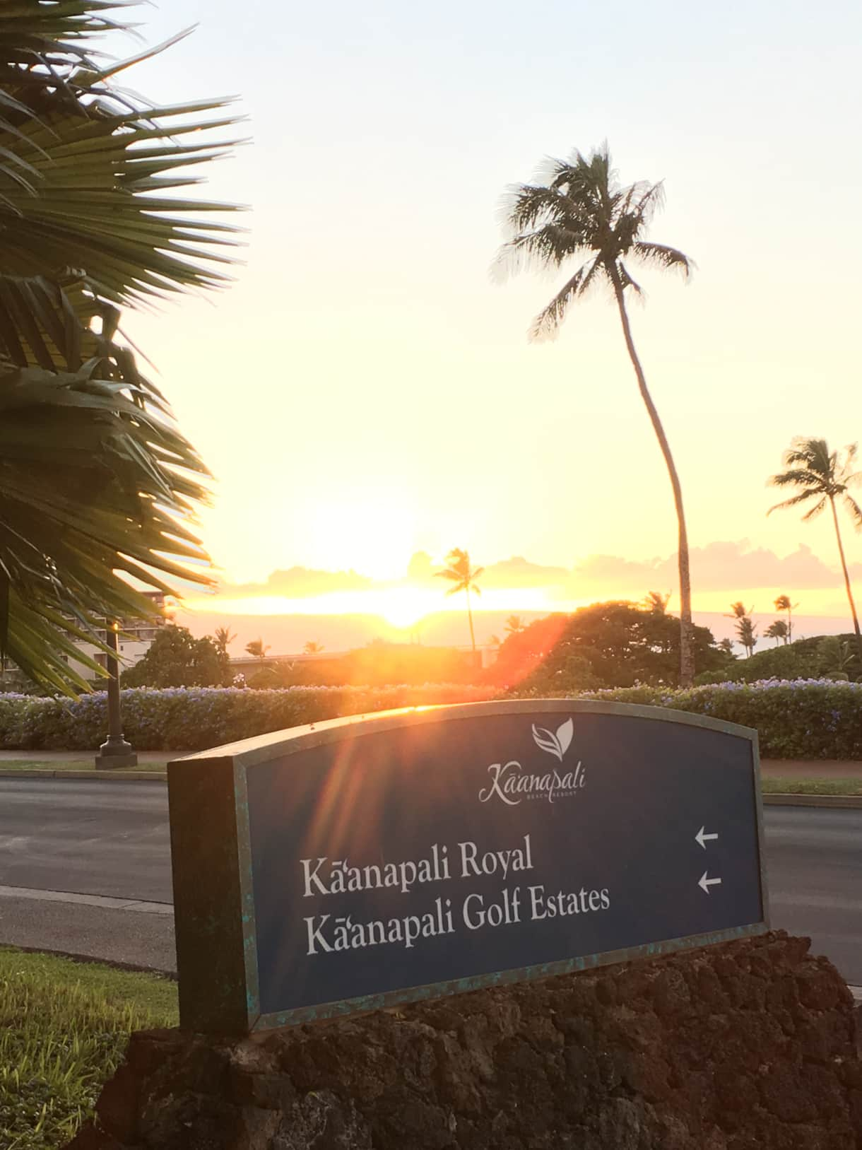 Ka'anapali Resort Area