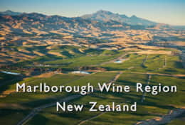 Blenheim Wine Region