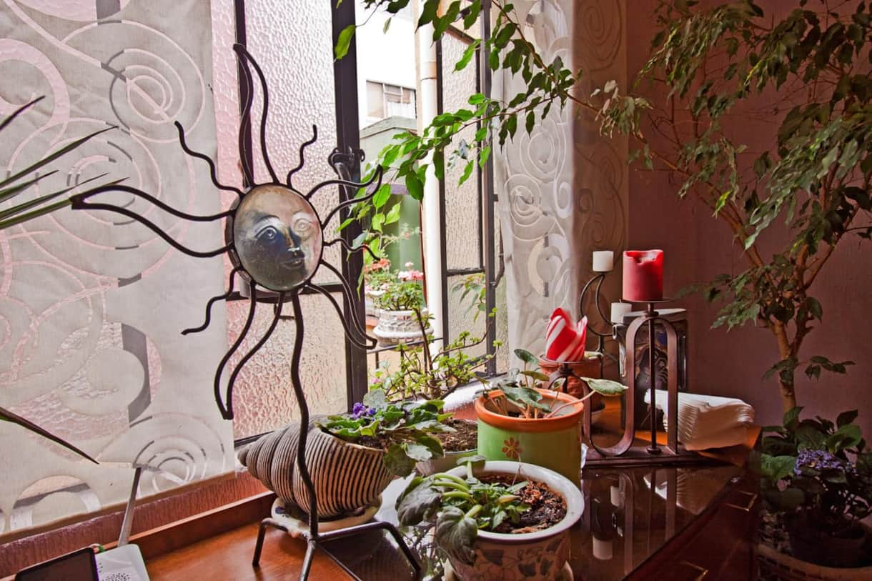 La ventana del comedor / Dining room window