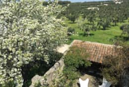 Santi Medici - view from the roof - Depressa di Tricase - Salento