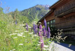Chalet Mountain Lodge in the summer.