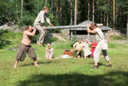 K45 Mackenzie Cottage – Årsunda Viking is a fun excursion try Viking games, eat like a Viking, etc