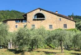 'Great window from olive groves